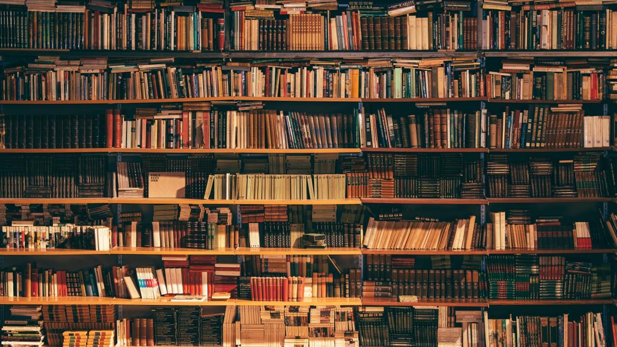 Maak kennis met Khalid Boudou in De Nieuwe Bibliotheek
