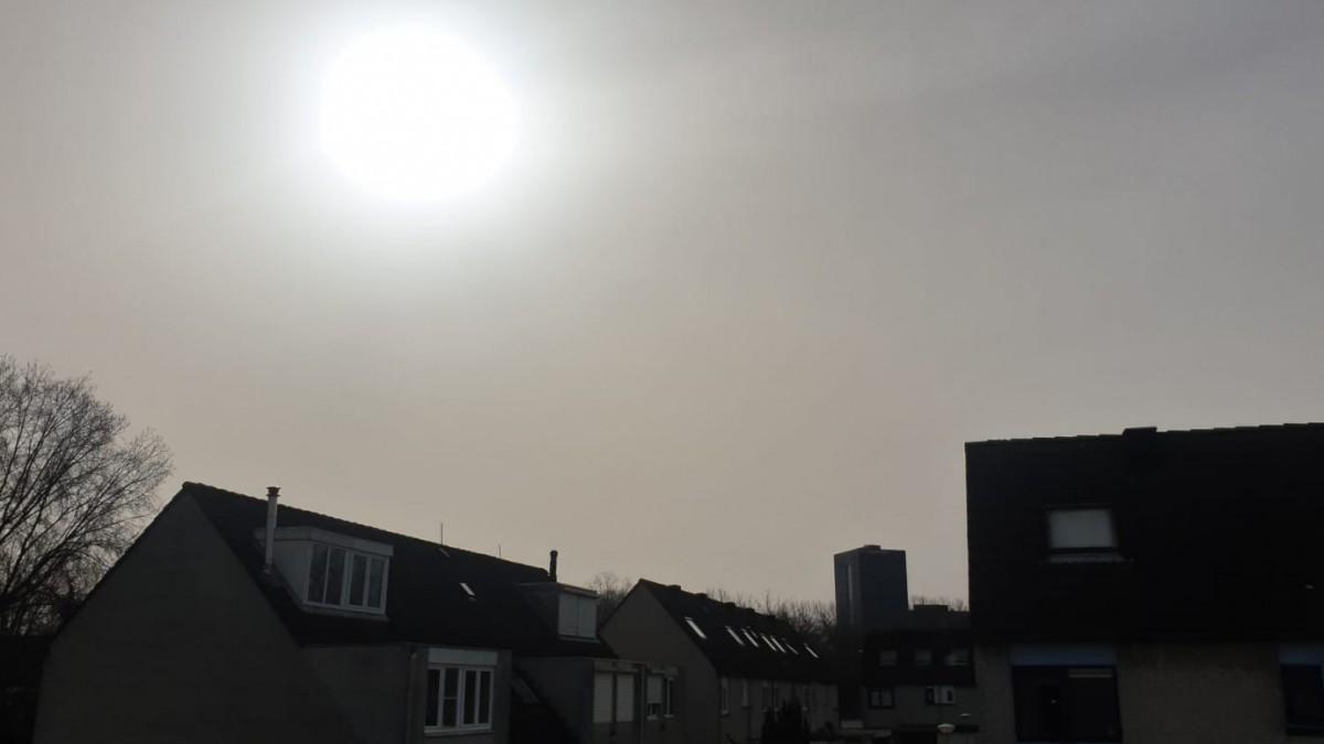 Zonne-advies voor Flevoland