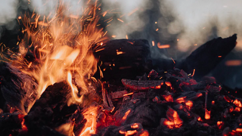 Wat te doen bij een bosbrand om gedekt te blijven bij de reisverzekeraar?