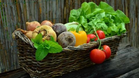 Almere krijgt duurzaam voedselaanbod in centrum