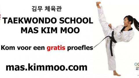 Taekwondo (proef)lessen voor alle leeftijden