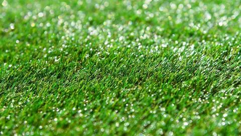City FC zet natuurgrasmat in het zonnetje