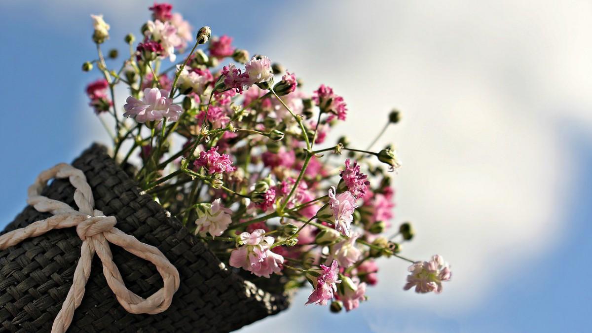 Morgen is er Luilak bloemenmarkt op Stadhuisplein!