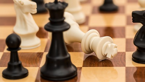 Almere met 466 deelnemers weer grootste schoolschaaktoernooi voor basisscholieren van Nederland
