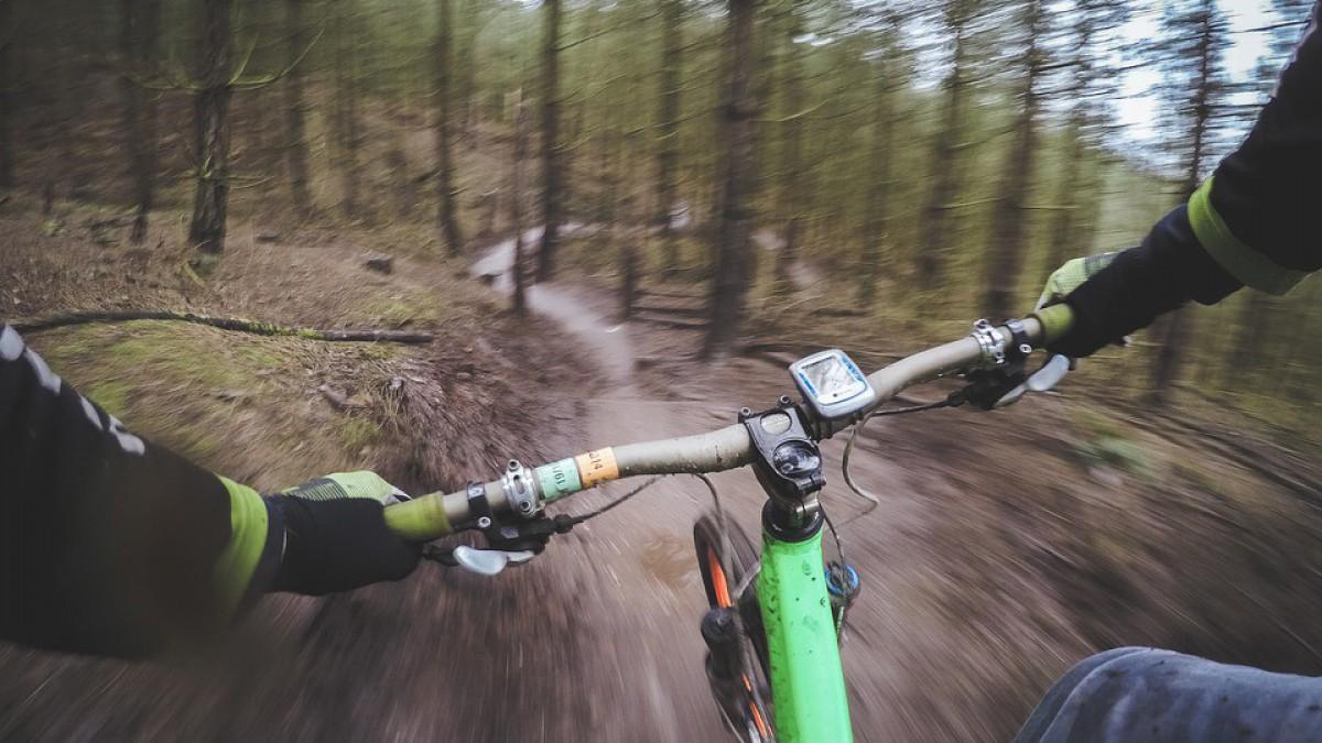 Crossen door de bossen