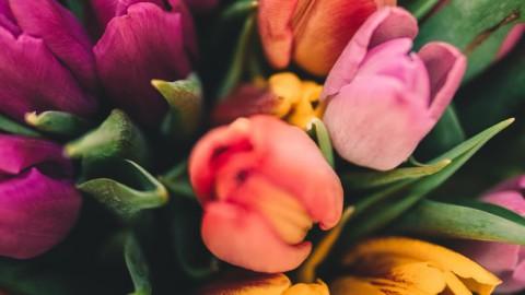 Fleur je huis op!