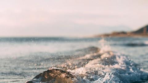 'Verstopt watertje moet hét rondje Almere Haven worden'