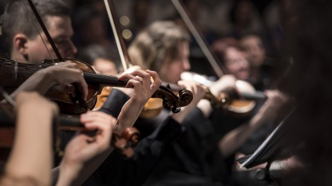Annuleringen Goede Rede Concerten en verder