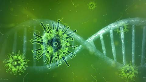 Inchecksysteem voor horeca voorkomt rompslomp door coronaregels