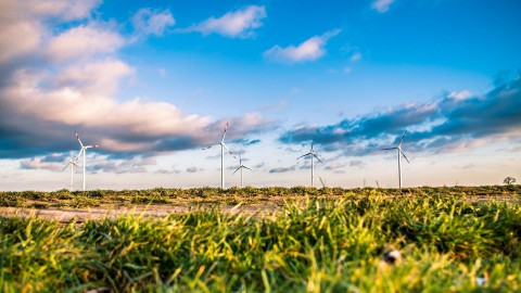 Raad van State beoordeelt bezwaren tegen Windplan Groen