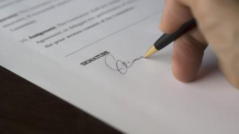 Ruim 600 handtekeningen tegen bomenkap Westerdreef