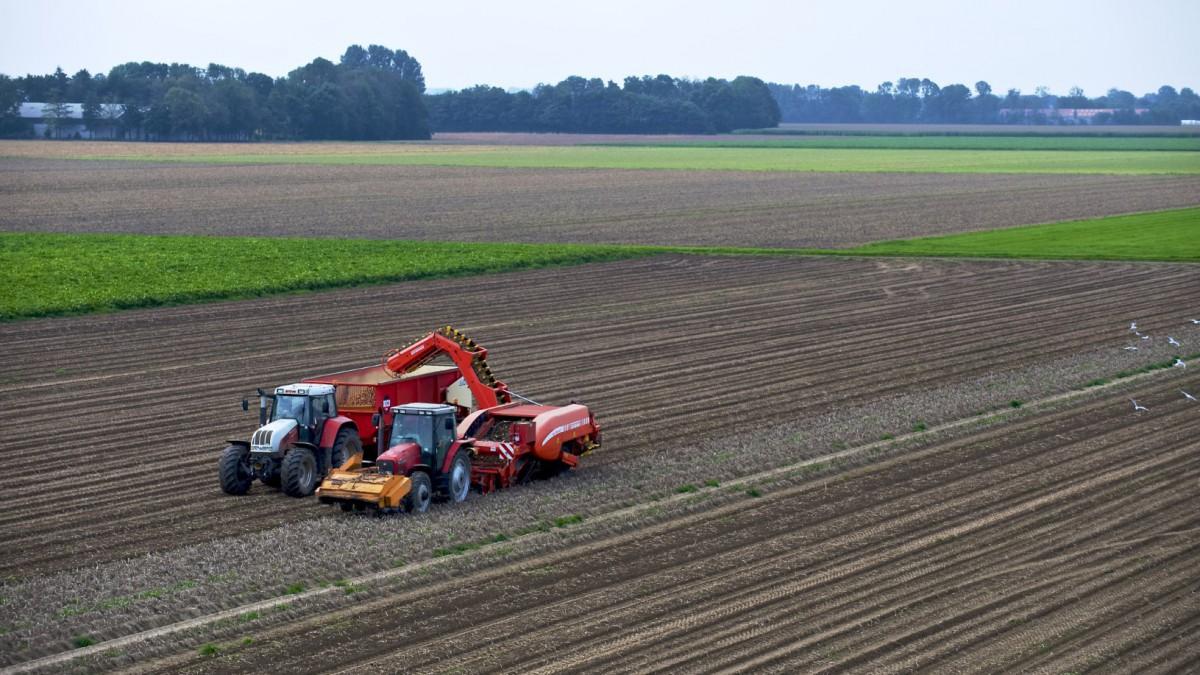 Zesde openstelling regeling Jonge Landbouwers