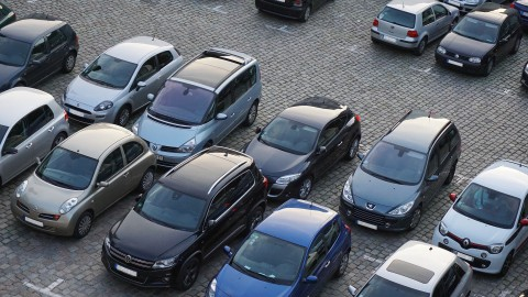 Flevolanders het meest verzot op de auto