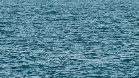 Gemalen waterschap gaan aan door scenario 'zeer nat'