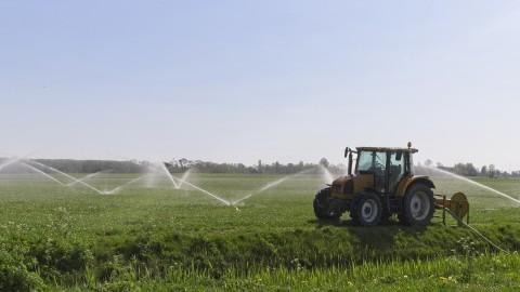 Boeren willen misverstanden wegnemen met leuke activiteiten