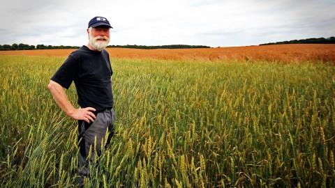 Boeren voor Buren mogelijk naar Flevoland